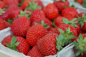 bakje-aardbeien